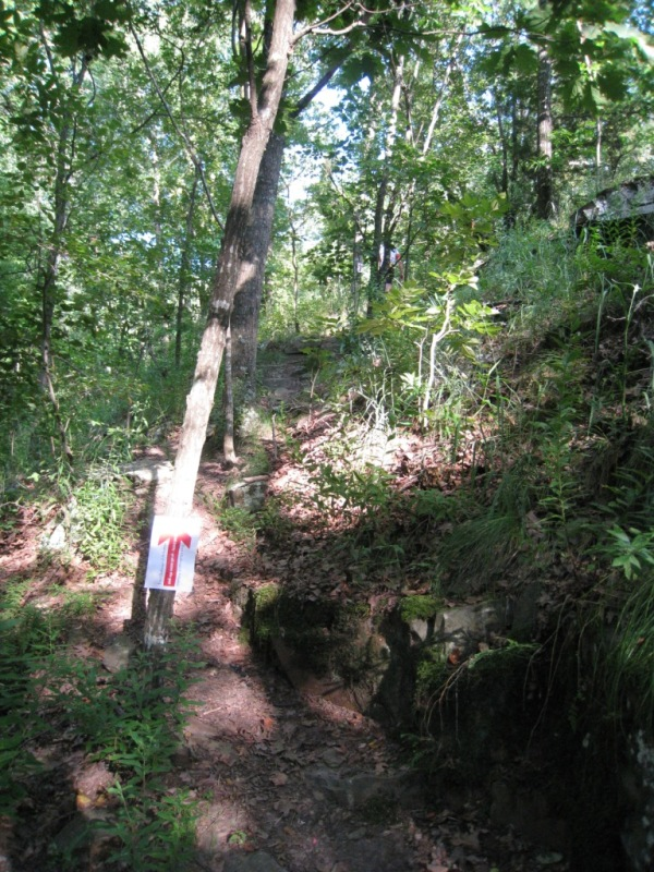 vertical goat path